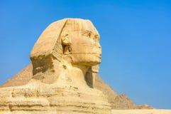 吉萨棉,埃及极大的狮身人面象 免版税图库摄影