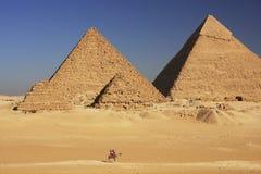 吉萨棉,开罗伟大的金字塔  库存照片