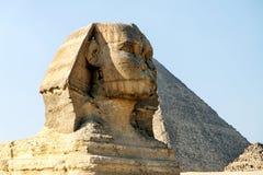 吉萨棉,开罗,埃及伟大的狮身人面象和金字塔  图库摄影
