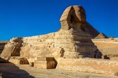 吉萨棉,开罗,埃及伟大的狮身人面象  免版税库存照片