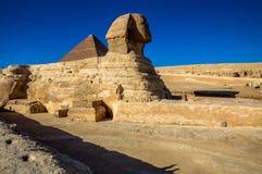 吉萨棉,开罗,埃及伟大的狮身人面象  库存图片