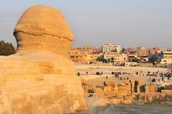 吉萨棉-开罗,埃及狮身人面象  免版税图库摄影
