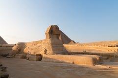 吉萨棉-开罗,埃及狮身人面象  免版税库存照片