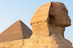 吉萨棉-开罗,埃及狮身人面象  库存照片