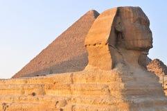 吉萨棉-开罗,埃及狮身人面象  免版税库存图片