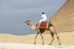 吉萨金字塔群,埃及 免版税库存图片