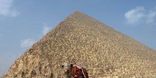 吉萨金字塔 免版税库存照片