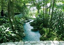 吉隆坡飞禽公园,马来西亚 免版税图库摄影