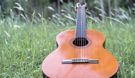吉他古典在草 库存照片