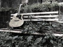 吉他和自然 图库摄影
