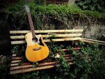 吉他和自然 库存图片