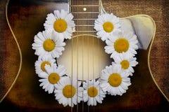 吉他和雏菊花 免版税库存图片