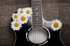 吉他和雏菊花 免版税库存照片