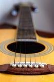 吉他坚果 库存图片