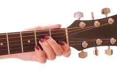 吉他的雕 库存图片