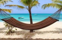 吊床、棕榈和海 免版税库存照片