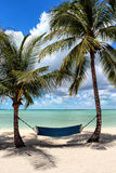 吊床、棕榈树和海 图库摄影