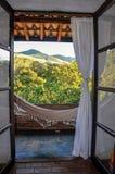 吊床和小山看法有森林的在背景中在Joanà ³ polis附近镇  库存图片