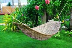 吊床在一个热带庭院里 库存照片