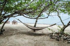 吊床在树的树荫下 图库摄影