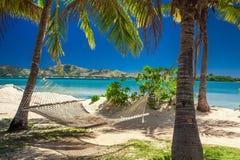 吊床在棕榈树树荫下在海滩的 库存图片