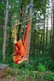 吊床在森林里 免版税图库摄影