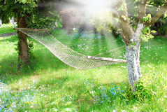 吊床在晴朗的庭院里 免版税库存照片