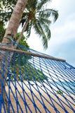 吊床摇摆由棕榈树在海滨胜地 免版税图库摄影