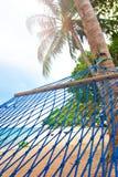 吊床摇摆由棕榈树在海滨胜地 库存图片