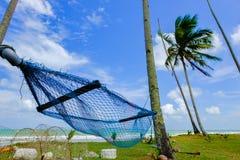 吊床的选择聚焦图象在海滩附近的椰子树下与蓝天 库存照片