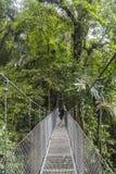 吊桥在哥斯达黎加密林 库存照片