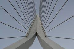吊桥阿姆斯特丹 免版税库存照片