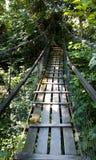 吊桥,索契地区,村庄厕所 免版税库存照片