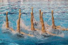 同步的游泳者 库存照片