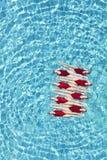 同步的游泳队 库存照片