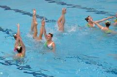 同步的游泳 库存照片