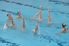 同步的游泳 免版税库存照片