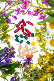 同种疗法 草本胶囊,白色backgroun的药用植物 图库摄影