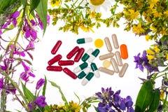同种疗法 草本胶囊,白色backgroun的药用植物 库存图片