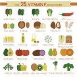 名列前茅25维生素E富有食物 向量例证