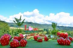 名字是草莓商店的爱草莓Pai在Pai 免版税库存照片
