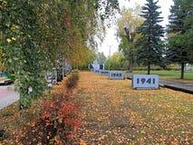 名望步行与黄色叶子的 免版税库存照片