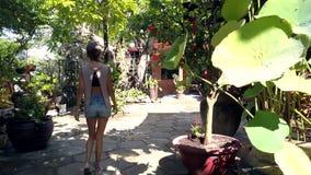 后侧方视图亭亭玉立的女孩慢慢地走关于寺庙围场 股票视频