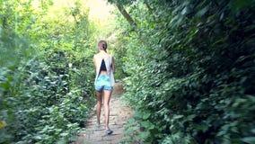 后侧方视图妇女沿横跨密林的轨道走 影视素材