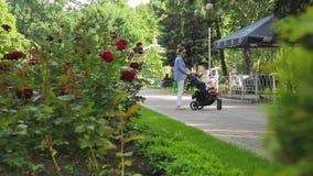 后侧方视图年轻亭亭玉立的妈妈走与婴儿推车在有树的摄影城市公园,并且花然后哺养鸽子群