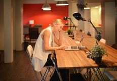 后工作,使用一台膝上型计算机的企业白肤金发的女孩在办公室 免版税图库摄影