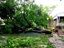 后果台风格伦达(Rammasun -国际名字)在菲律宾 图库摄影