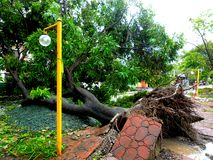 后果台风格伦达(Rammasun -国际名字)在菲律宾 免版税库存照片