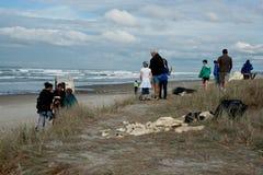 后果海滩d集合人查看的里纳 库存照片