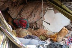 后果蛙属广场在孟加拉国(文件照片) 库存图片